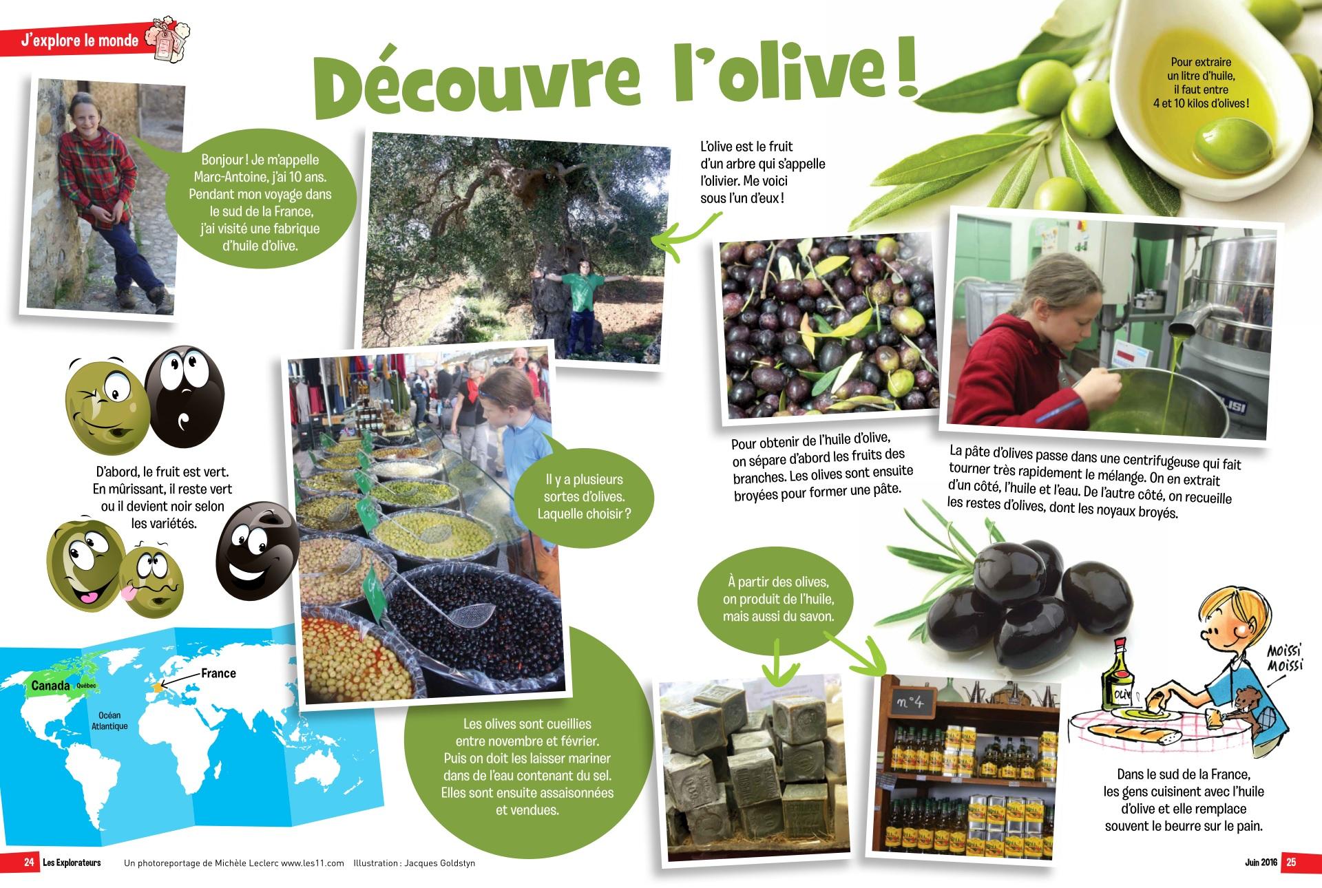 Marc-Antoine aux pays des olives